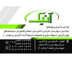 عرضه مستقیم چوب ترمو وود در استان خوزستان( ترمو وود آنیک )