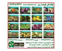 نهالستان طبیعت سبز (میاندوآب)   تولید کننده انواع نهال میوه , بذر نهال و درختچه های زینتی