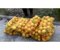 کیسه توری بسته بندی پرتقال _ اکسیر ساز شمال